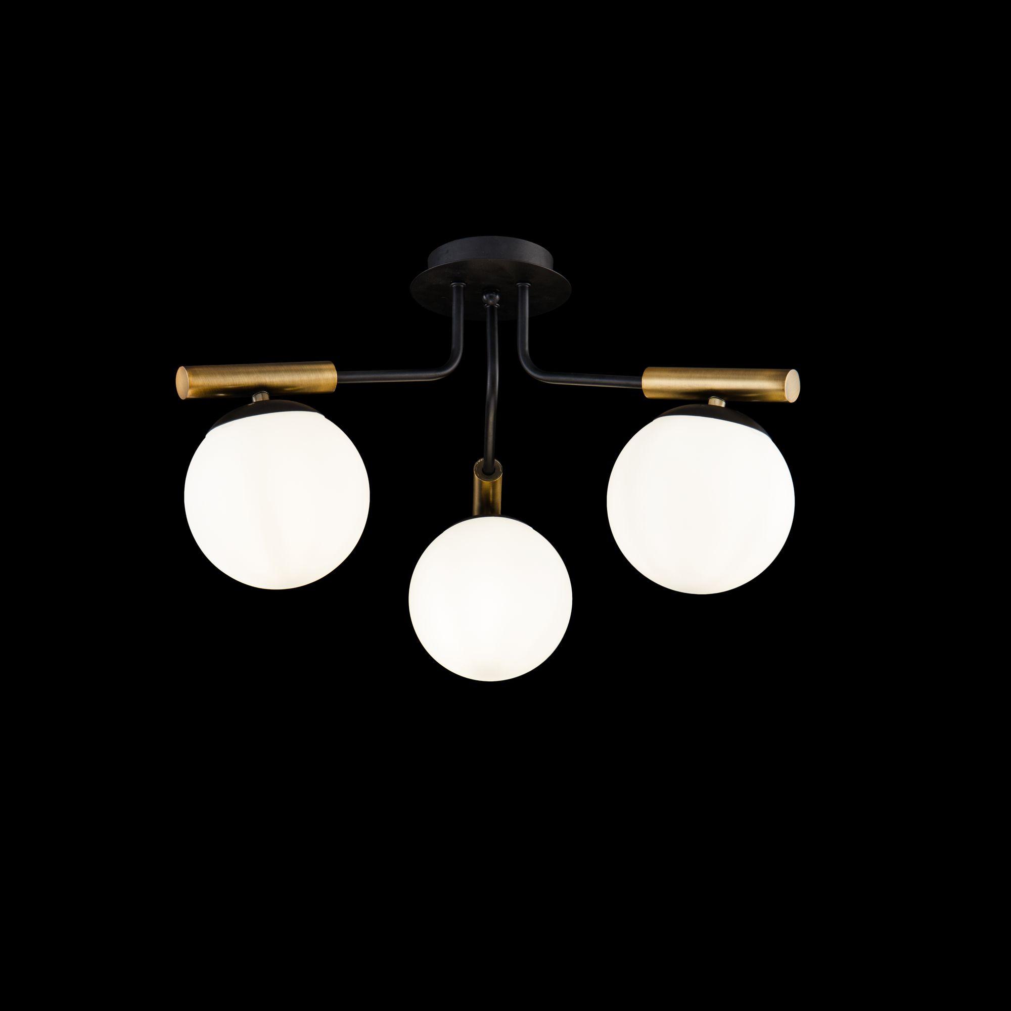Потолочные светильники FR5011CL-03B Paolina Freya