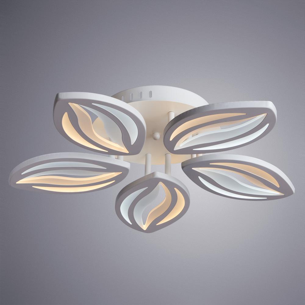 Потолочные светильники A1098PL-5WH DAISY Arte Lamp
